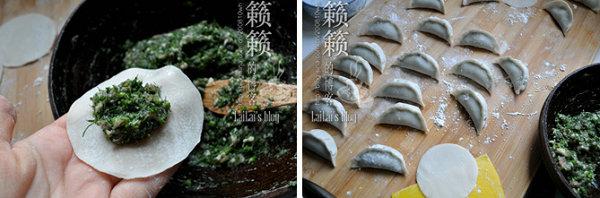 茴香鲜肉饺的做法[籁籁]